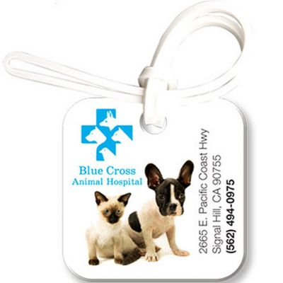 Bag & Luggage Tags - Small Square ID - Full Color