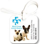Bag & Luggage Tag - Small Square ID - Full Color