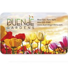 BIC 30 Mil Jumbo 4-color process Business Card Magnet